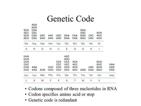 Genetic Code Codons composed of three nucleotides in RNA Codon specifies amino acid or stop Genetic code is redundant.