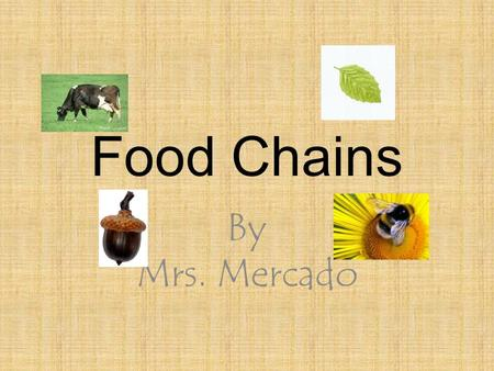 Food Chains By Mrs. Mercado.