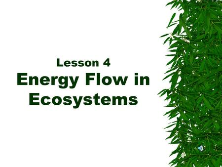 Lesson 4 Energy Flow in Ecosystems. Energy AAll living things need energy to grow and to carry out their activities. TThey get this energy from their.