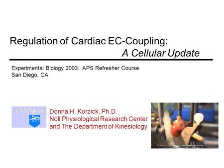 Donna H. Korzick, Ph.D. Noll Physiological Research Center and The Department of Kinesiology Regulation of Cardiac EC-Coupling: A Cellular Update Experimental.
