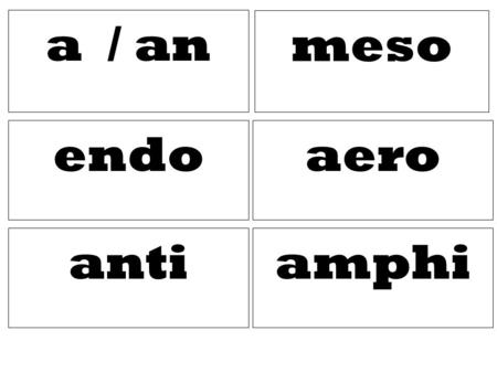 A / an meso amphi aero anti endo. Middle Not / non against Internal, inside, inner Both, doubly Needing oxygen, air.