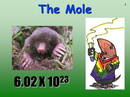 1 The Mole 6.02 X 10 23 6.02 X 10 23 2 STOICHIOMETRYSTOICHIOMETRY - the study of the quantitative aspects of chemical reactions.