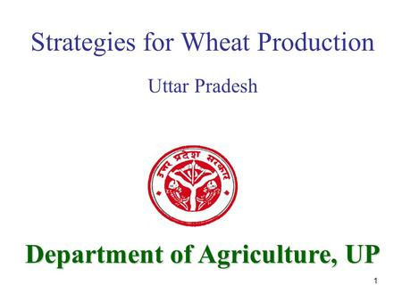1 Department of Agriculture UP Strategies for Wheat Production Uttar Pradesh Department of Agriculture, UP.