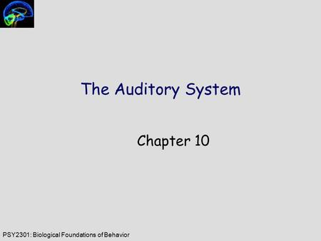PSY2301: Biological Foundations of Behavior The Auditory System Chapter 10.