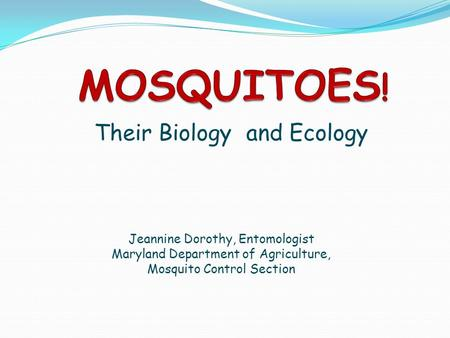 Their Biology and Ecology Jeannine Dorothy, Entomologist Maryland Department of Agriculture, Mosquito Control Section.