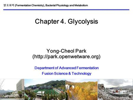 1/30 Chapter 4. Glycolysis Yong-Cheol Park (http://park.openwetware.org) Department of Advanced Fermentation Fusion Science & Technology 발효화학 (Fermentation.