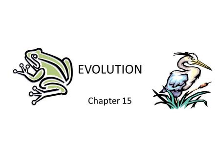 EVOLUTION Chapter 15. Charles Darwin The variety of living things… BIOLOGICAL DIVERSITY.