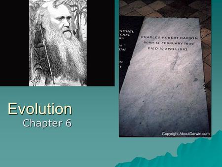 Evolution Chapter 6. Pre-Darwinian Theories