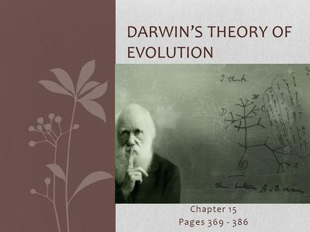 Chapter 15 Pages 369 - 386 DARWIN'S THEORY OF EVOLUTION.