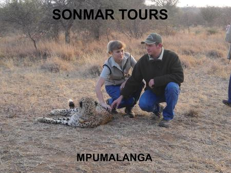 SONMAR TOURS MPUMALANGA. TOUR DETAILS Caves Reptile park Elephant rides and interactions Canyon sight seeing Potholes Hippo feeding Cheetah walks Kruger.