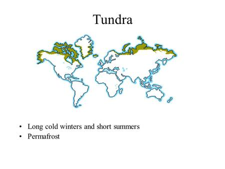 Tundra Long cold winters and short summers Permafrost.