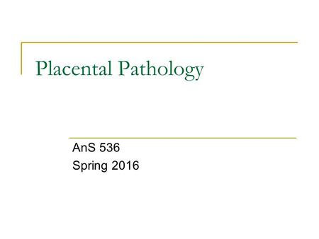 Placental Pathology AnS 536 Spring 2016. The Placenta The placenta is an endocrine organ, a site of synthesis, and selective transport of hormones and.