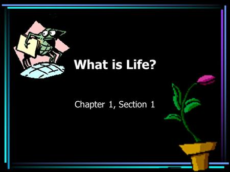 What is Life? Chapter 1, Section 1. Organism Any living thing Some are unicellular Some are multicellular.