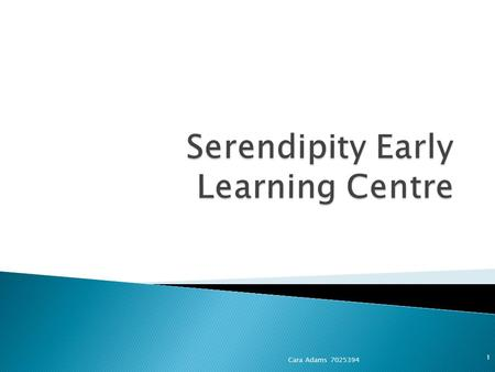 Cara Adams 7025394 1. 2 Changes to Serendipity Early Learning Centre's philosophy Existing outdoor environment policy is inclusive of the following: -
