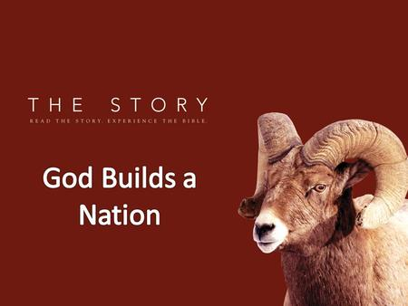 God Builds a Nation.