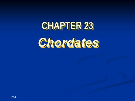 23-1 CHAPTER 23 Chordates Chordates. Copyright © The McGraw-Hill Companies, Inc. Permission required for reproduction or display. 23-2.