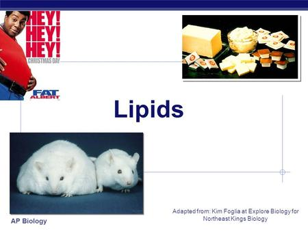 AP Biology Adapted from: Kim Foglia at Explore Biology for Northeast Kings Biology Lipids.