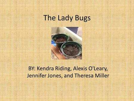 The Lady Bugs BY: Kendra Riding, Alexis O'Leary, Jennifer Jones, and Theresa Miller.