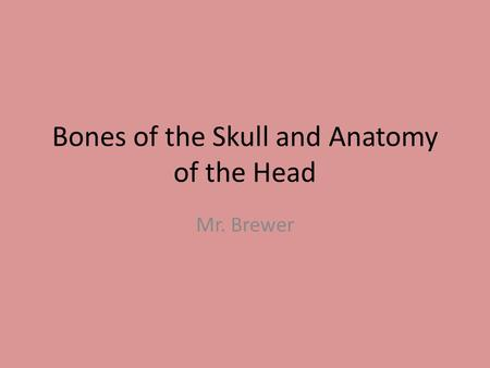 Bones of the Skull and Anatomy of the Head Mr. Brewer.