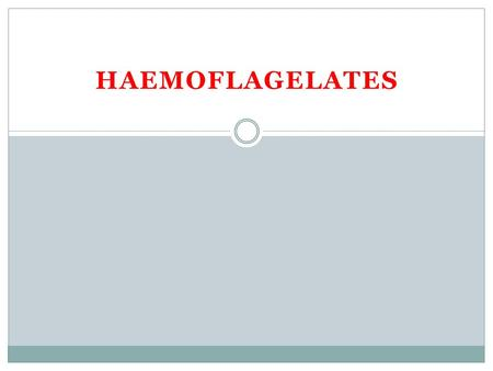 HAEMOFLAGELATES. Leishmania species  Clinical disease:  Visceral leishmaniasis  Cutaneous leishmaniasis  Mucocutaneous leishmaniasis  The species.