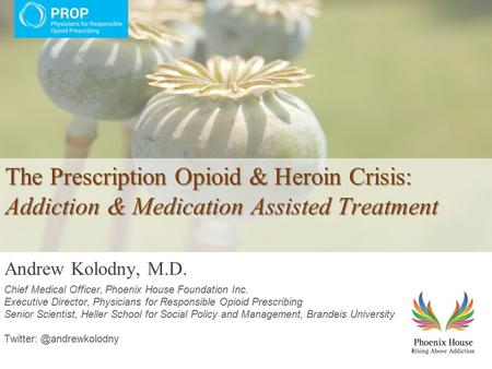 The Prescription Opioid & Heroin Crisis: Addiction & Medication Assisted Treatment Andrew Kolodny, M.D. Chief Medical Officer, Phoenix House Foundation.