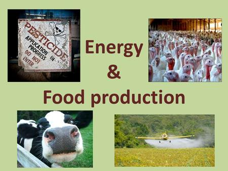 Energy & Food production. Modern Intensive Farming.