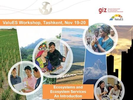 Page 1 ValuES Workshop, Tashkent, Nov 19-20 Ecosystems and Ecosystem Services An Introduction.