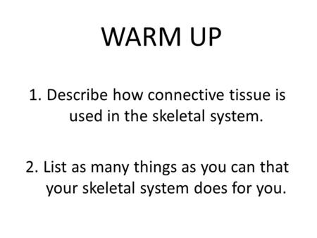 WARM UP 1.Describe how connective tissue is used in the skeletal system. 2.List as many things as you can that your skeletal system does for you.