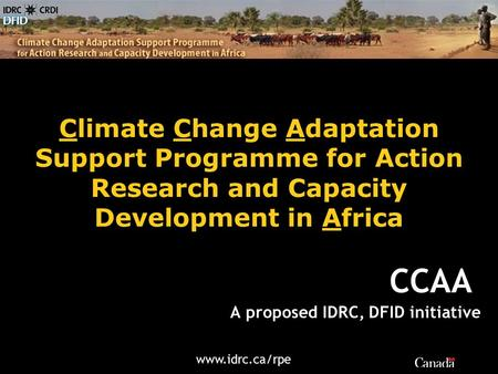 Www.idrc.ca/rpe Climate Change Adaptation Support Programme for Action Research and Capacity Development in Africa A proposed IDRC, DFID initiative CCAA.