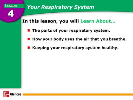 Your Respiratory System In this lesson, you will Learn About… The parts of your respiratory system. How your body uses the air that you breathe. Keeping.
