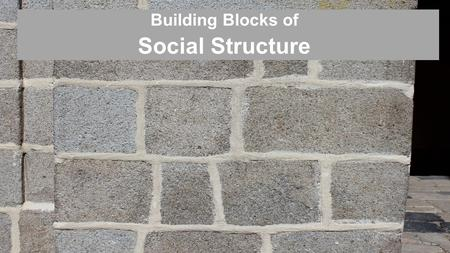 Building Blocks of Social Structure. Status Social Structure – the network of interrelated statuses & roles that guide human interaction Status – a socially.