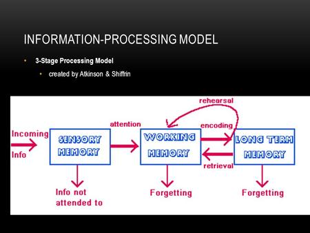 INFORMATION-PROCESSING MODEL 3-Stage Processing Model created by Atkinson & Shiffrin.