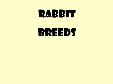 RABBIT BREEDS. Origin – where did the breed begin Weights – range from 1 lb to 16 lbs Ear type – lop or upright Fur type – long or short Fur color – many.
