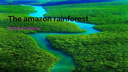 The amazon rainforest By Vicky Trosheva. facts The amazon is a home to 427 mammals, 1,300 birds, and 400 amphibians. It is a home to 3000 fruits that.