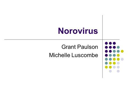 Norovirus Grant Paulson Michelle Luscombe. 2 Objectives of Presentation Clinical presentation of Norovirus disease Transmission of Norovirus Treatment.