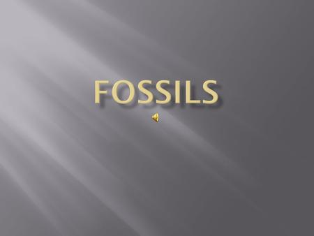 Fossils are the preserved remains of plants and animals that lived millions of years ago.
