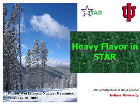 Winter Workshop in Nuclear Dynamics, February 10, 2005 Manuel Calderón de la Barca Sánchez Indiana Unviersity Heavy Flavor in STAR.