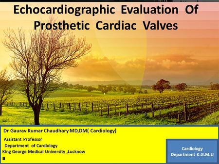 Thanks ………… Echocardiographic Evaluation Of Prosthetic Cardiac Valves Dr Gaurav Kumar Chaudhary MD,DM( Cardiology) Assistant Professor Department of Cardiology.