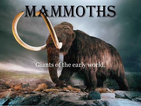 MAMMOTHS Giants of the early world.. Characteristics and short facts of the mammoth. Mammoth were extinct elephant-like animals. These massive herbivores.