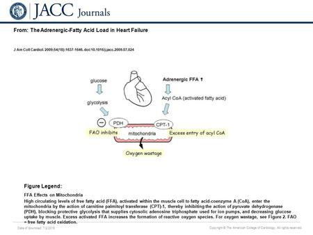 Date of download: 7/2/2016 Copyright © The American College of Cardiology. All rights reserved. From: The Adrenergic-Fatty Acid Load in Heart Failure J.