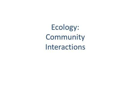 Ecology: Community Interactions. Food Web Notes/2.0: Energy and feeding relationships! Terms to know…..