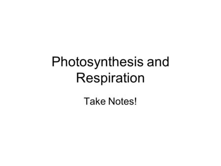 Photosynthesis and Respiration Take Notes!. Photosynthesis worksheet 1.What is necessary for plant survival? Photosynthesis! Four Ingredients Needed: