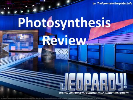 Photosynthesis Review. Light Dep.Vocab.EquationCalvinMisc. $100 $200 $300 $400 $500 FINAL JEOPARDY FINAL JEOPARDY.