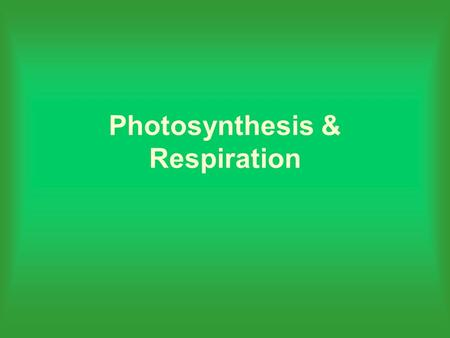 Photosynthesis & Respiration. Objectives Recognize that most plants and animals require food and oxygen Identify the function of the chloroplast during.