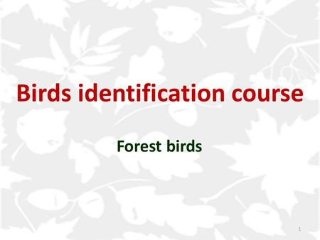 Birds identification course Forest birds 1. Common redstart Blackbird Bullfinch Hawfinch Chaffinch Greenfinch Goldfinch Training in identification Content.