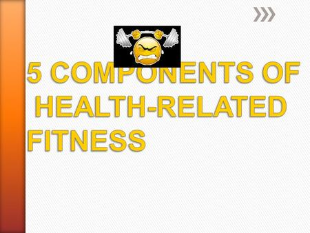 » Cardiovascular Endurance » Muscular Strength » Muscular Endurance » Flexibility » Body Composition.