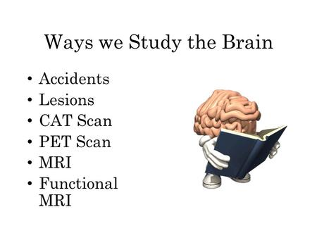 Ways we Study the Brain Accidents Lesions CAT Scan PET Scan MRI Functional MRI.