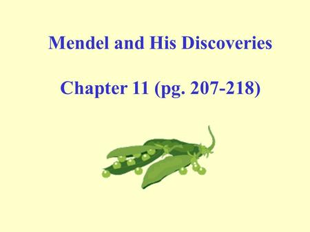 Mendel and His Discoveries Chapter 11 (pg. 207-218)