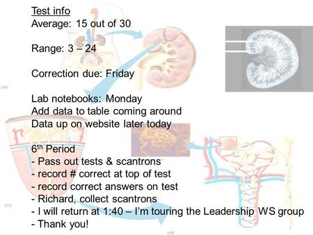 Test info Average: 15 out of 30 Range: 3 – 24 Correction due: Friday Lab notebooks: Monday Add data to table coming around Data up on website later today.