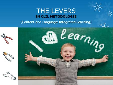 THE LEVERS IN CLIL METODOLOGIE (Content and Language Integrated Learning)